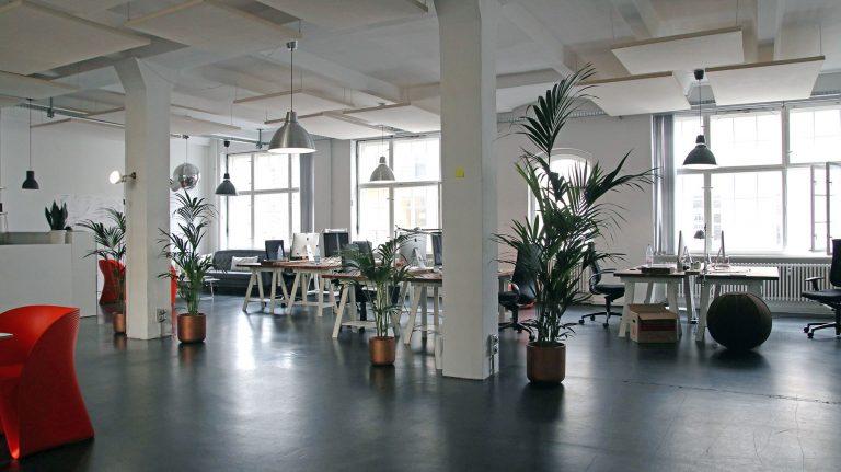 Büro einrichten: Ästhetik, Wohlbefinden und Effizienz durch clevere Raumgestaltung steigern